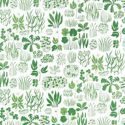 tapet blad grön