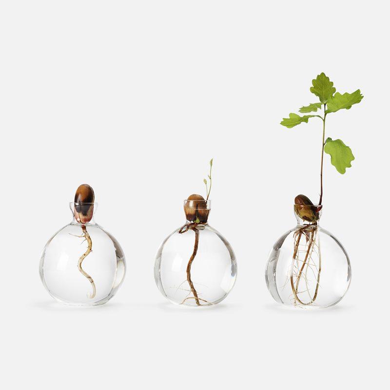 Vase Acorn - Glass | Svenskt Tenn