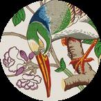 Toucans White